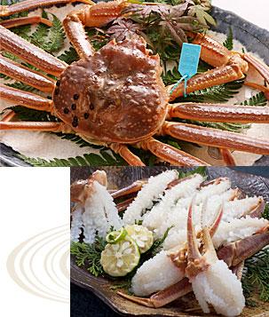 タグ付き活ずわい蟹